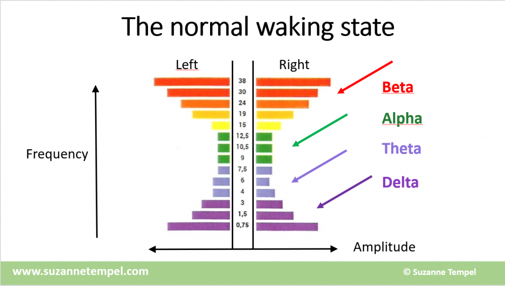 Normal Waking State Brain Waves